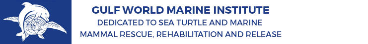 marine science icon